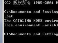 【WEB】The CATALINA_HOME environment variable is not defined correctly